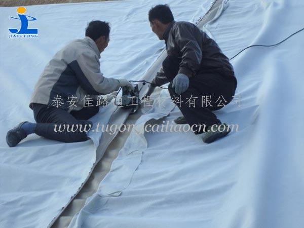 复合土工膜工程案例