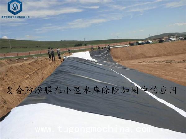 复合土工膜在小型水库除险加固中的应用