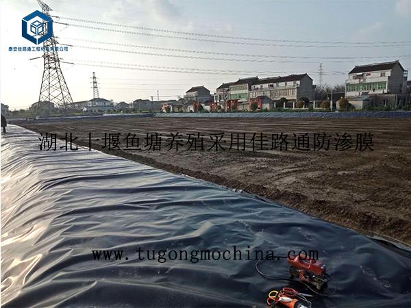 湖北十堰鱼塘养殖采用佳路通防渗土工膜